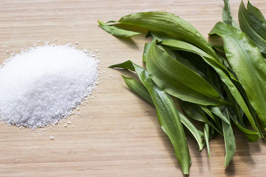 Salt og ramsløg