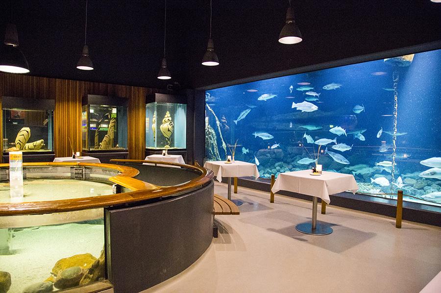 akvarium-fiskeriogsoefartsmuseet