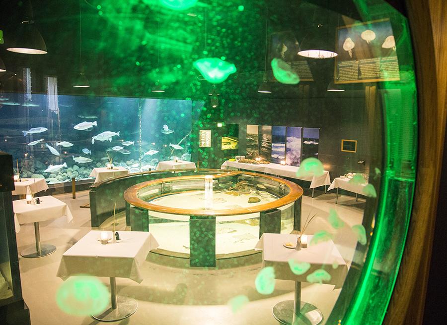 akvarium-fiskerimuseet